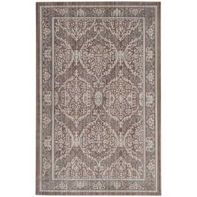 Abdoulaye Gray & Brown Area Rug Rug Size: 4 x 6