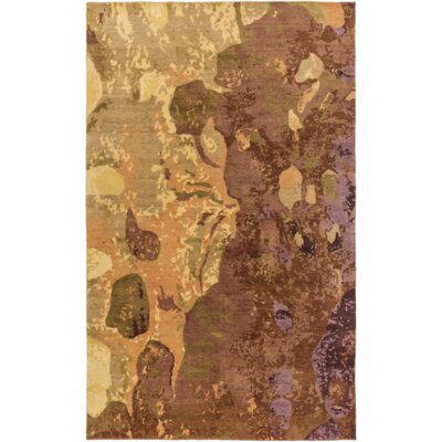 Aziz Brown Area Rug Rug Size: 2 x 3
