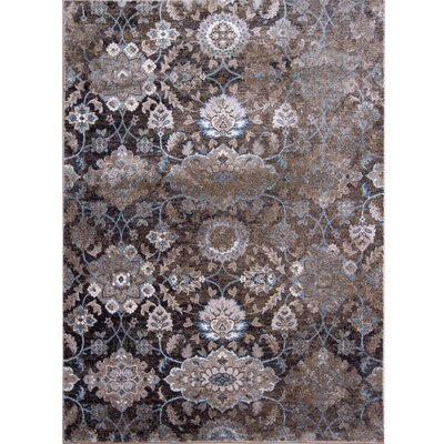 Aquashicola Distressed Mocha Area Rug Rug Size: Rectangle 710 x 102