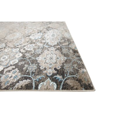 Aquashicola Distressed Mocha Area Rug Rug Size: 53 x 72