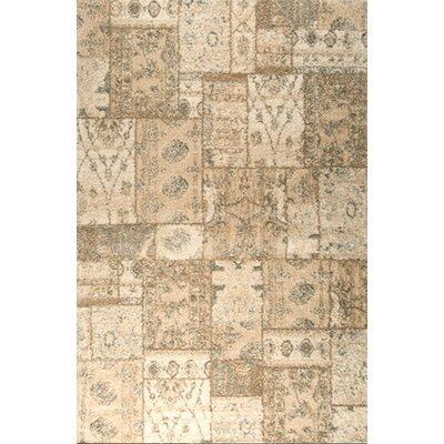 Ardmore Ivory Shag Area Rug Rug Size: 52 x 72