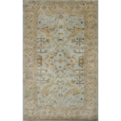 Rania Hand-Tufted Light Blue Area Rug Rug Size: 5 x 8