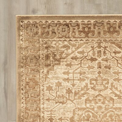 Machin Beige Area Rug Rug Size: Rectangle 8 x 11