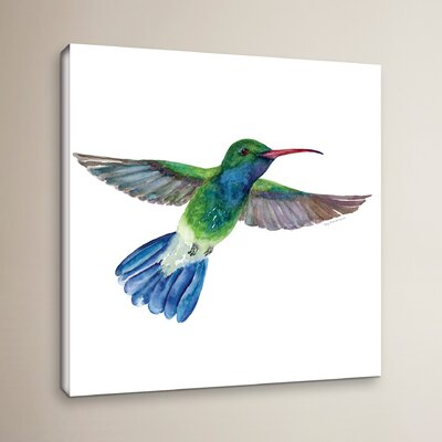 'Broad Billed Fan Tail' Painting Print on Wrapped Canvas BLMT3484 41788397
