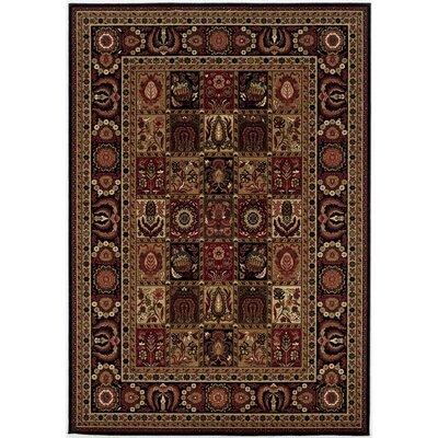 Chakra Brown/Black Area Rug Rug Size: Rectangle 46 x 66
