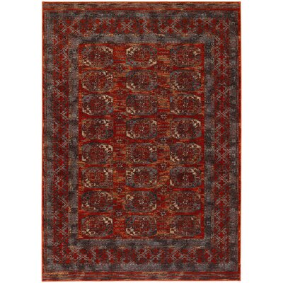 Alliance Rust Area Rug Rug Size: 46 x 66