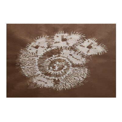 Rafia Brown/Beige Indoor/Outdoor Area Rug Rug Size: 2 x 3