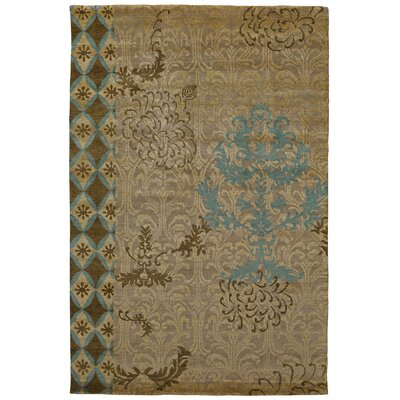 Rubio Green Area Rug Rug Size: Rectangle 2 x 3