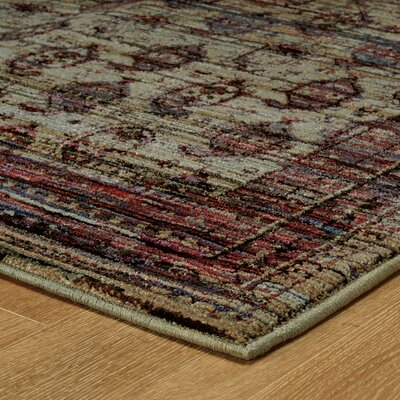 Rosalia Distressed Red Area Rug Rug Size: Rectangle 66 x 910