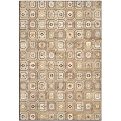 Ileana Brown/ Tan Area Rug Rug Size: 76 x 106