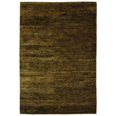 Parisi Green Area Rug Rug Size: 6 x 9