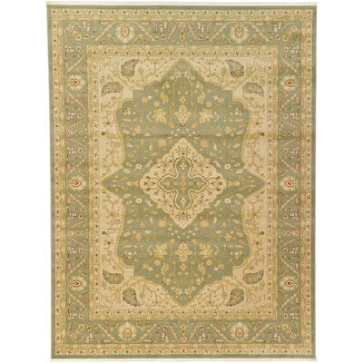 Fonciere Light Green Area Rug Rug Size: 9 x 12