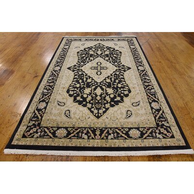 Britley Black/Beige Area Rug Rug Size: Rectangle 9 x 12