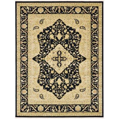 Fonciere Black Area Rug Rug Size: 9 x 12