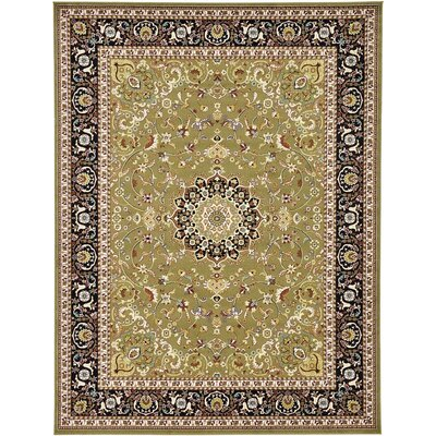 Anghal Green Area Rug Rug Size: 6 x 9