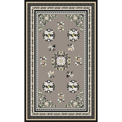 Alois Gray Area Rug Rug Size: Rectangle 2 x 3