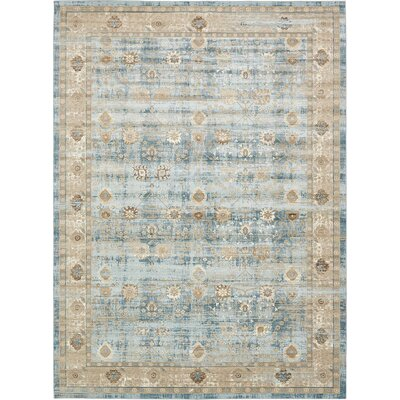 Miara Light Blue Area Rug Rug Size: Rectangle 102 x 135