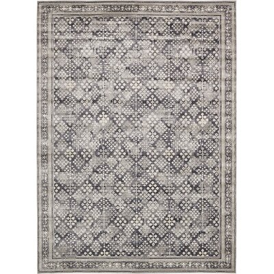 Jayleen Dark Gray Area Rug Rug Size: Square 6