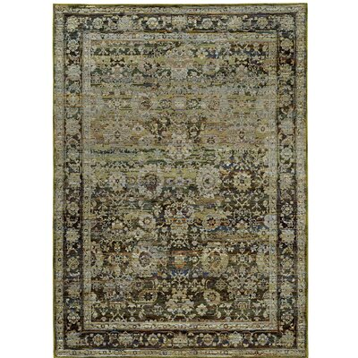 Rosalia Distressed Green/Brown Area Rug Rug Size: 52 x 76