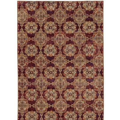 Rosalia Red/Orange Area Rug Rug Size: 86 x 117