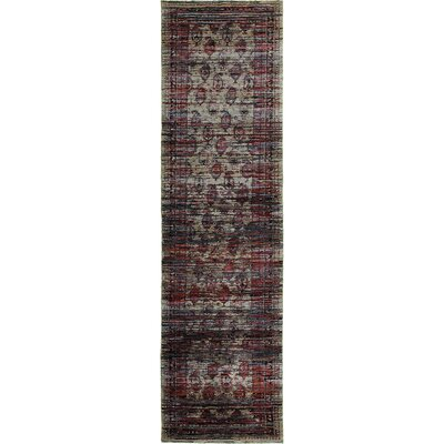 Rosalia Distressed Red Area Rug Rug Size: Runner 22 x 83