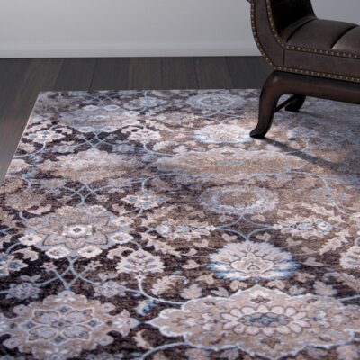 Aquashicola Distressed Mocha Area Rug Rug Size: 33 x 43