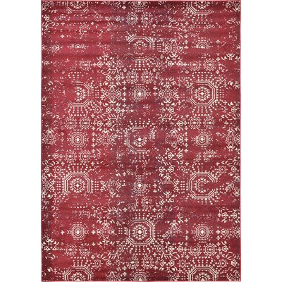 Lagouira Red Area Rug Rug Size: Runner 27 x 10