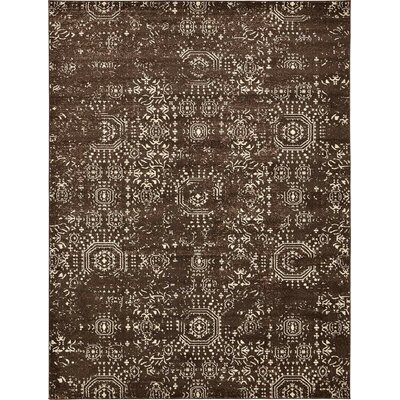 Lagouira Brown Area Rug Rug Size: Runner 27 x 10