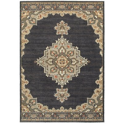 Sacha Black/Gray Area Rug Rug Size: Rectangle 53 x 76