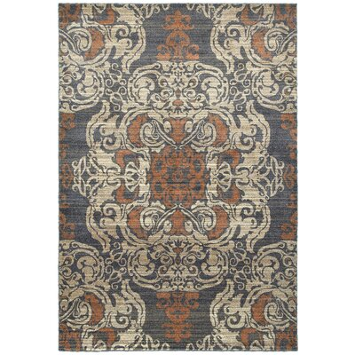 Sacha Blue/Rust Area Rug Rug Size: Rectangle 53 x 76