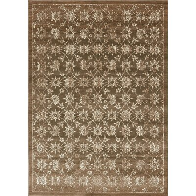 Geleen Brown Area Rug Rug Size: 8 x 114