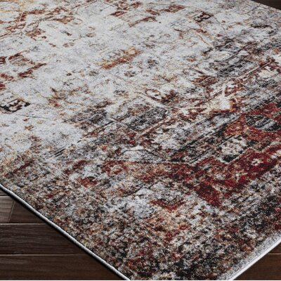 Brahim Red/Gray Area Rug Rug Size: Rectangle 53 x 73