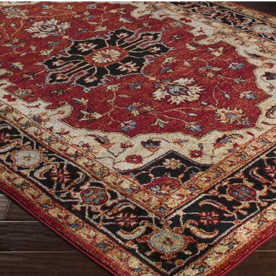 Brahim Red/Black Area Rug Rug Size: Runner 27 x 73