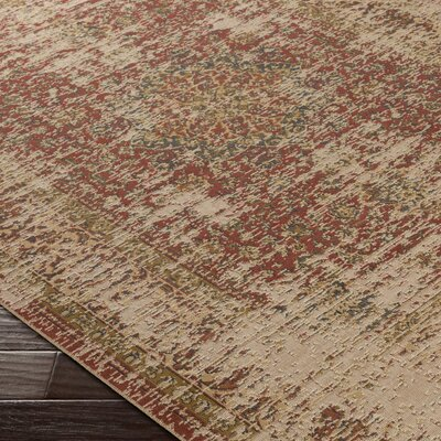 Ayoub Brown Area Rug Rug Size: 52 x 76