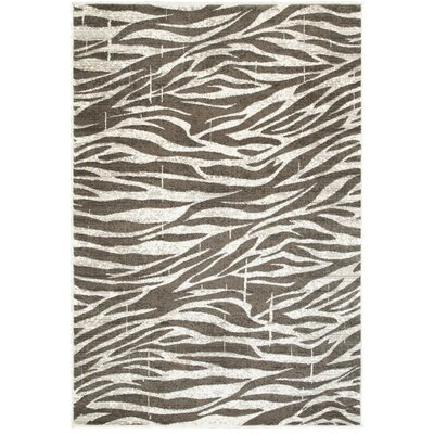 Wali White/Coconut Hush Indoor Area Rug Rug Size: 51 x 75