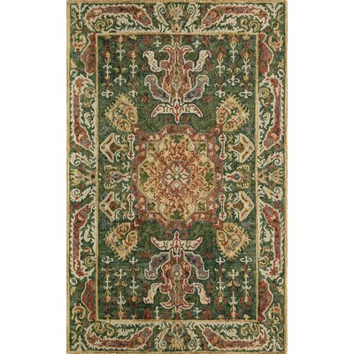 Adilet Hand-Tufted Green Outdoor Area Rug Rug Size: Rectangle 36 x 56