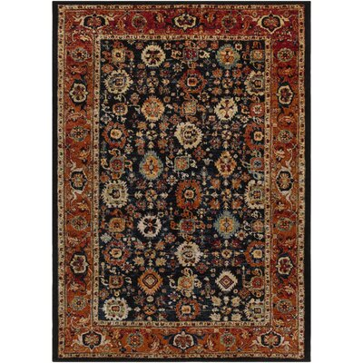 Brahim Multi-Colored Area Rug Rug Size: 93 x 126