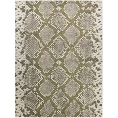 Fujii Light gray/Lime Area Rug Rug Size: 76 x 106