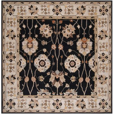 Topaz Coal Black Area Rug Rug Size: Square 8