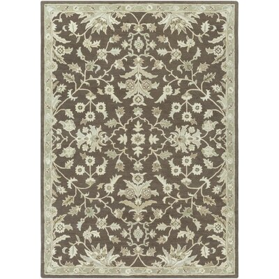 Casselman Chocolate/Beige Area Rug Rug Size: Rectangle 8 x 11