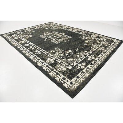 Bhakta Black Area Rug Rug Size: 9'10