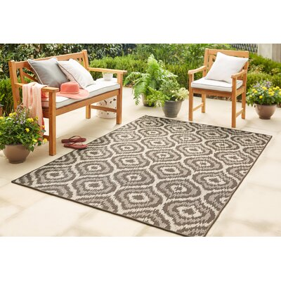 Holubov Indoor/Outdoor Area Rug Rug Size: Rectangle 53 x 76
