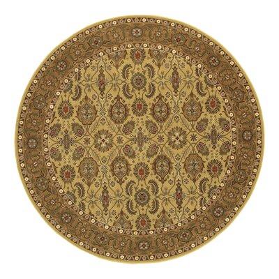 Chakra All Over Vase Hazelnut/Beige Area Rug Rug Size: Round 66