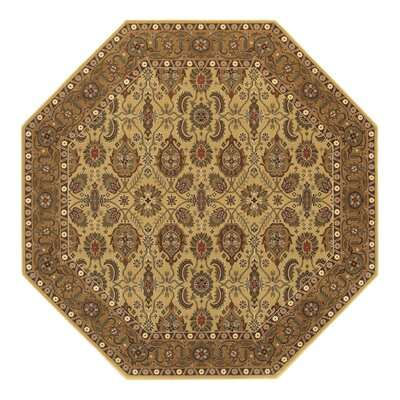Chakra All Over Vase Hazelnut/Beige Area Rug Rug Size: 46 x 66