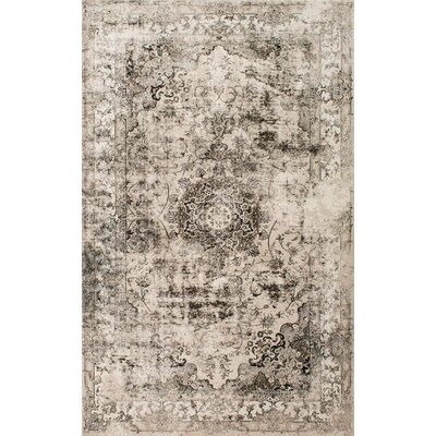 Doheny Gray/Ivory Area Rug Rug Size: Rectangle 5 x 8