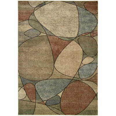 Pyrex Area Rug Rug Size: Rectangle 96 x 13
