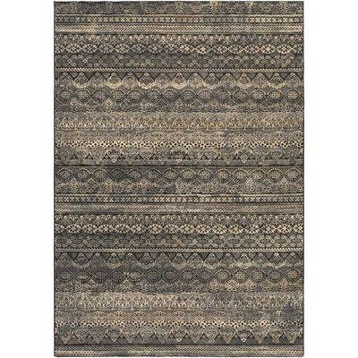 Amasa Black/Gray Area Rug Rug Size: 66 x 96