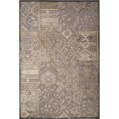 Quinn Rayon and Chenille Machine Made Gray Area Rug Rug Size: 2 x 311