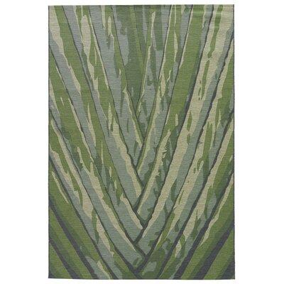 Jaimey Seagrass Indoor/Outdoor Area Rug Rug Size: 5 x 8