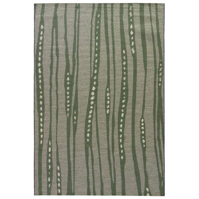 Jaimey Pussywillow Gray Indoor/Outdoor Area Rug Rug Size: 2 x 3